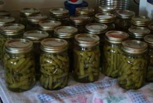 Bottled beans